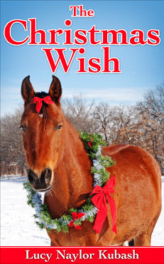 Christmas Wish book cover