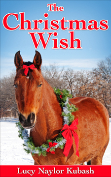 Christmas Wish by Lucy Naylor Kubash book cover